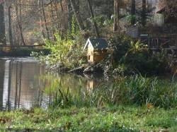 Teich Fasanerie Wiesbaden