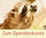 button_spendenkonto